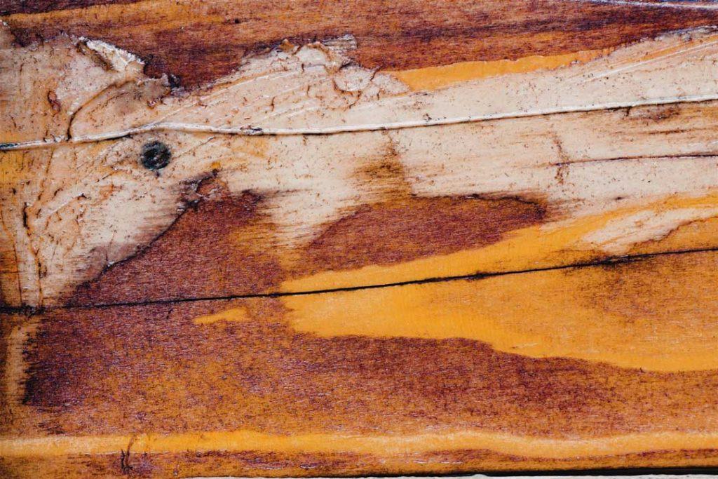 Wood_Texture_1_02