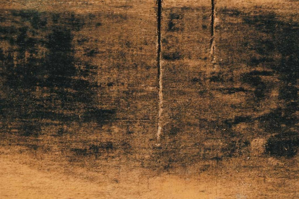 Wood_Texture_1_07