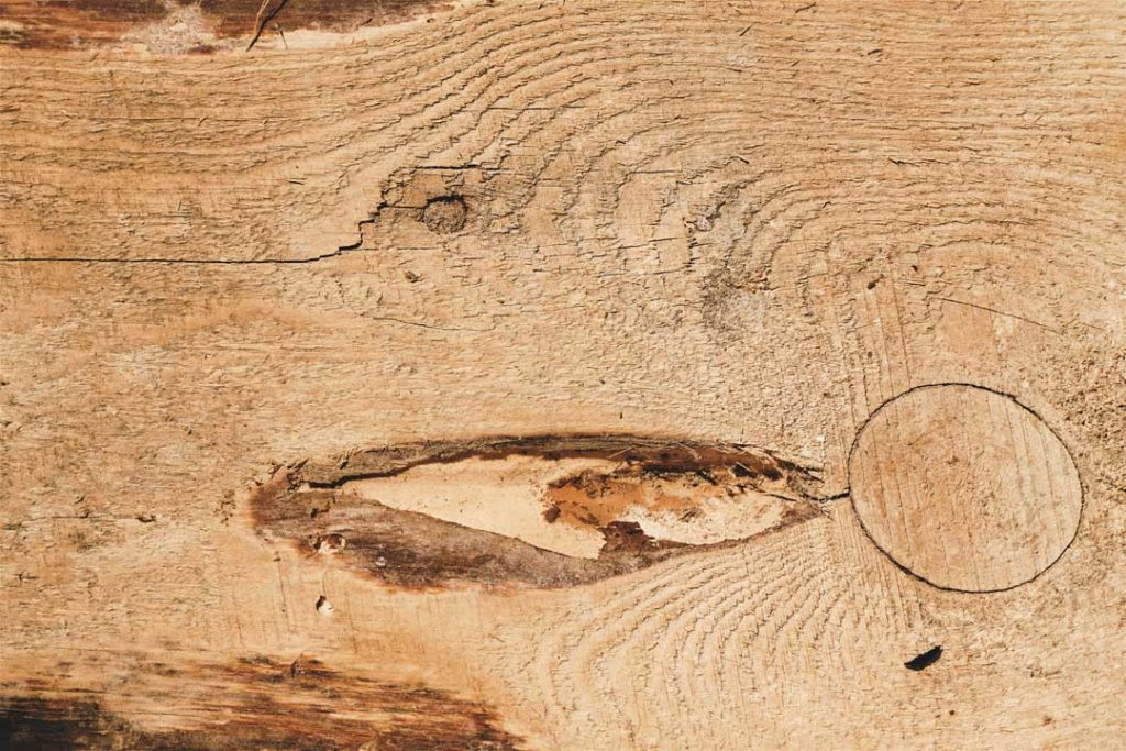 Wood_Texture_2_06