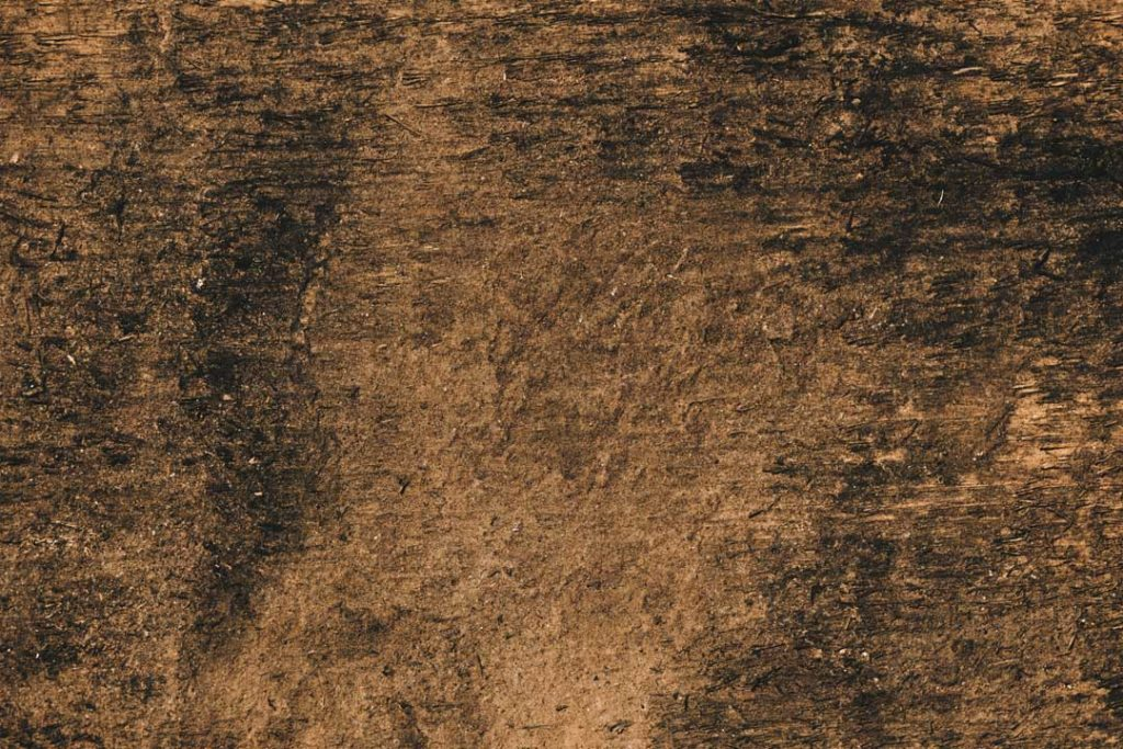 Wood_Texture_2_10