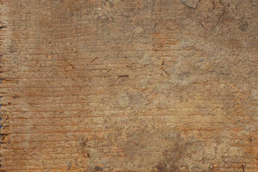 Wood_Texture_2_11